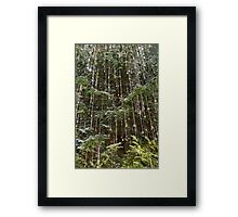 Crystal Rain Framed Print