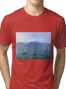Ducks on a lake in the mountains Tri-blend T-Shirt