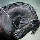 Graceful Black Horse: Friesian by isabelleann