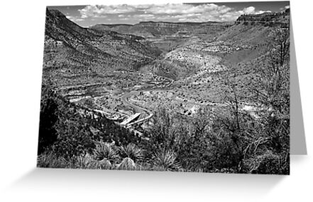 Beautiful Salt River Canyon ~ Black & White by Lucinda Walter