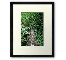 Green Bushes Framed Print