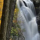 Autumn Over Dingmans Falls by Stephen Vecchiotti