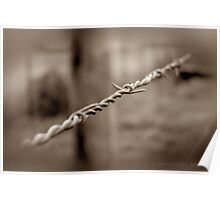 Country Fencing ~ Barbed Wire Poster