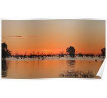 menindee lake sunset Poster