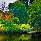 The Beauty of Stillness - Autumn #2 by Trevor Kersley