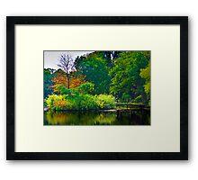 The Beauty of Stillness - Autumn #2 Framed Print