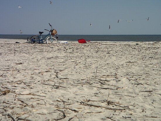 Beach Bike by Danielle Gill