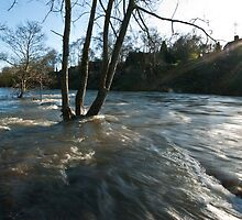 Severn floods by John Hallett