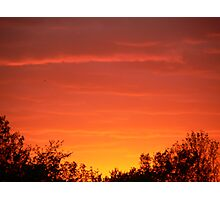 sunset by the woods Photographic Print