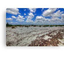 Cozumel, Mexico - Lonely Beach Canvas Print
