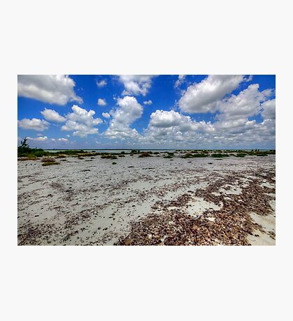 Cozumel, Mexico - Lonely Beach Photographic Print