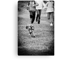 OnePhotoPerDay Series: 286 by L. Canvas Print