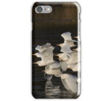 To Roost They Go iPhone Case/Skin