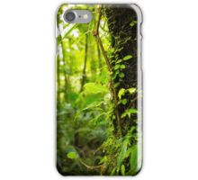Trunk of the Jungle iPhone Case/Skin