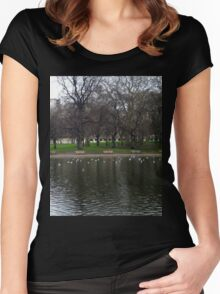 Landscape Women's Fitted Scoop T-Shirt