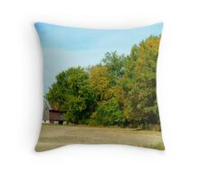 101310-49   THE CROPS ARE IN Throw Pillow