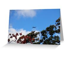 As the season flies by ('Leaf'ing below a jet plane) Greeting Card