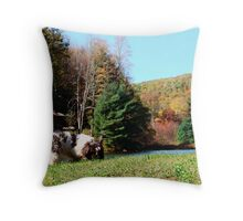 Kato by the Lake in October Throw Pillow