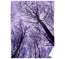 Branches Purple Poster