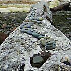 Log memorial by Kathy Yates
