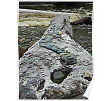 Log memorial Poster