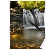 Autumn at Wyandot Falls Poster
