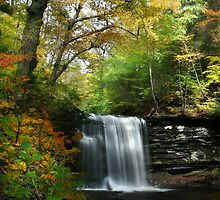Rickett's Glen ~ Harrison Wright Waterfall by Lori Deiter