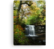 Rickett's Glen ~ Harrison Wright Waterfall Canvas Print