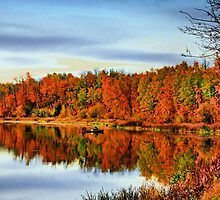 Indian Summer by Laurie Hodge