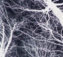 Branches Black Sticker