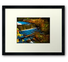 Walpole Town Forest III - Little water fall Framed Print