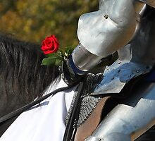 A Knight's Favor by Michelle Kempf