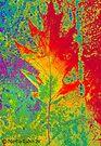 Artsy Autumn - Greeting Card by Marcia Rubin