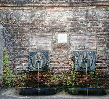 Drinking Fountains of Italy by randymir