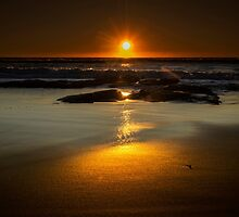 Sun Reflection by Andrew Dickman