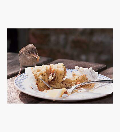 Cheeky Bird. Photographic Print