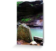 guardian of the green water Greeting Card
