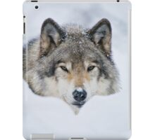 Timber Wolf In Snow iPad Case/Skin