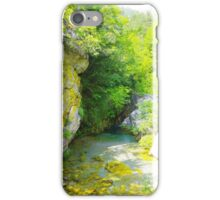 Small Mountain Pond iPhone Case/Skin