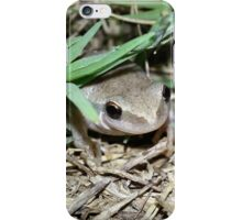 It's A Very Tiny Frog iPhone Case/Skin