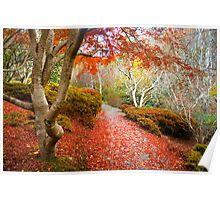 Autumn at Mount Lofty Botanic Garden Poster