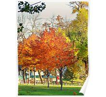 Red Orange Yellow Green - Autumn Poster