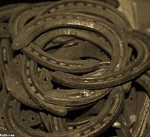 Collection of Horse Shoes by Hiebl Photography