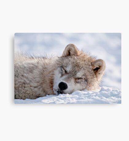I lay my head down to sleep Canvas Print