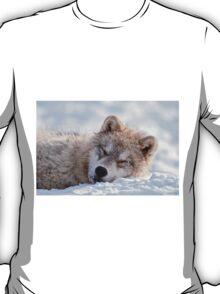 I lay my head down to sleep T-Shirt