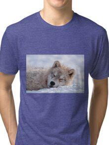 I lay my head down to sleep Tri-blend T-Shirt
