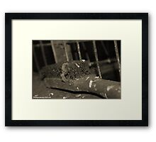 Wire brush Framed Print