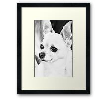 """""""Who's that? ... who's there?"""" Framed Print"""