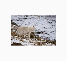 Arctic Wolf on Hill Unisex T-Shirt