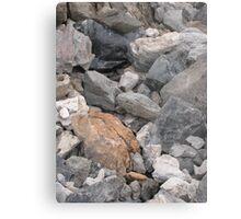 Multi-Colored Volcanic Rocks Metal Print